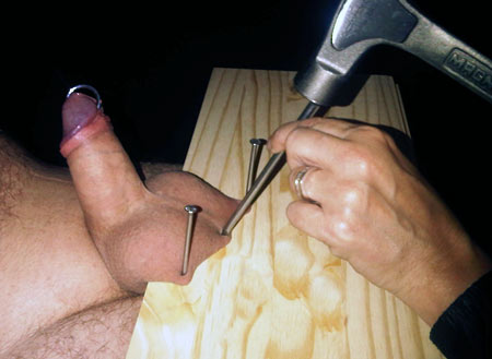 penis nailed to board