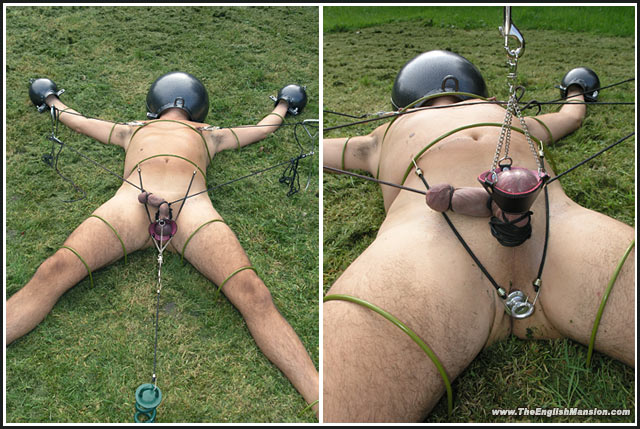 Ball bondage photos