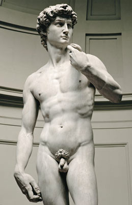 Michelangelo's masterpiece -David is supposed to be a symbol of strength and youthful male beauty... and yet... he did have a very small one.