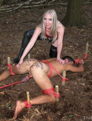 Woodland Dogging: Free Entertainment Slave