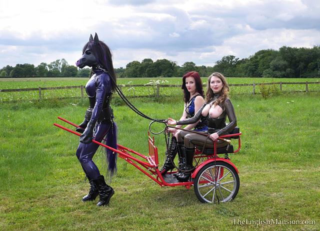 rubber-pony-cart-pulling-18