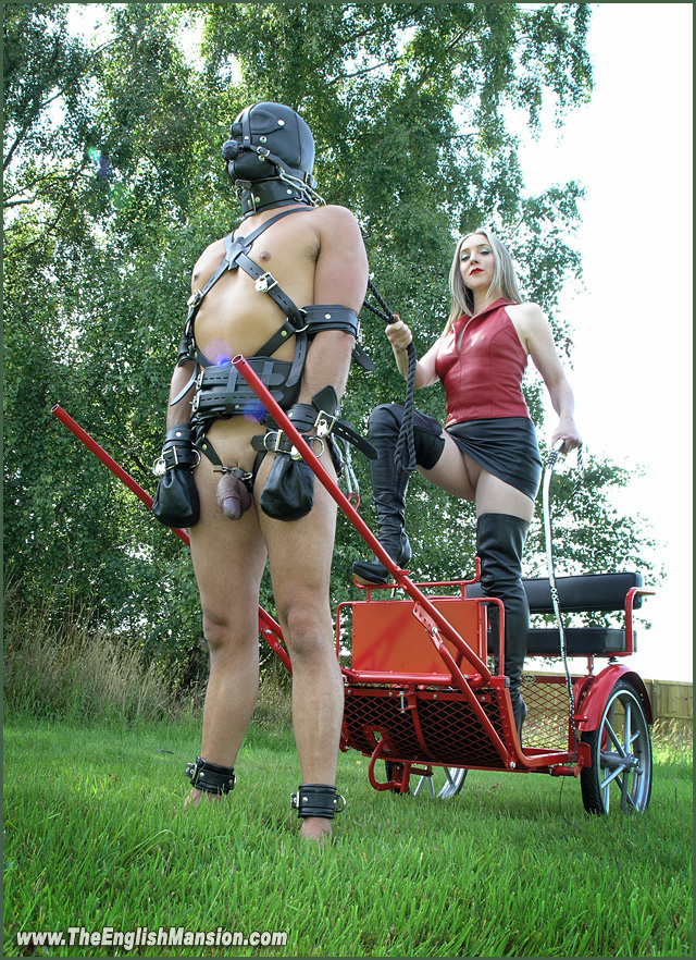 Chariot-dominatrix-riding-sendep