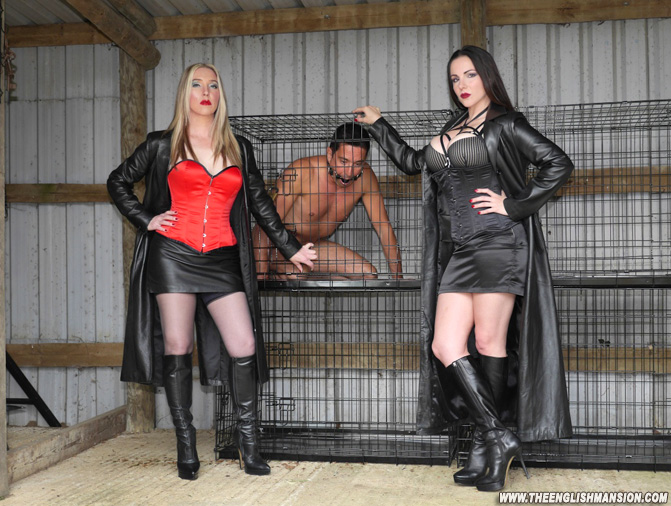 slave training blog