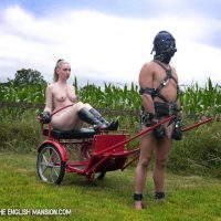 Blind Obedience – Extreme Pony Training