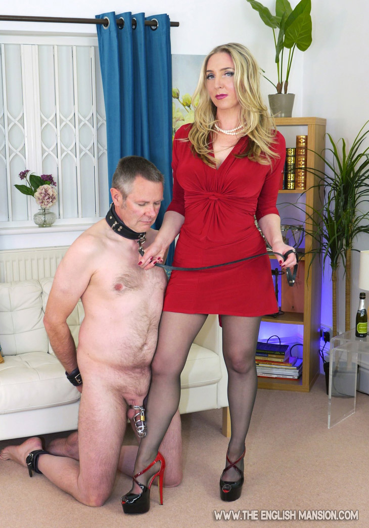 WLR - Wife Led Relationship