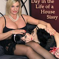 A Day in the Life of a House Sissy
