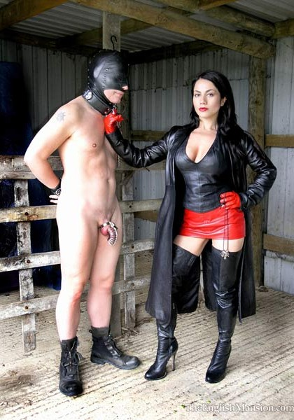 Come on slave there's work to be done