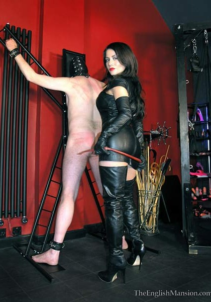 Now you will feel the Kiss of my Whip