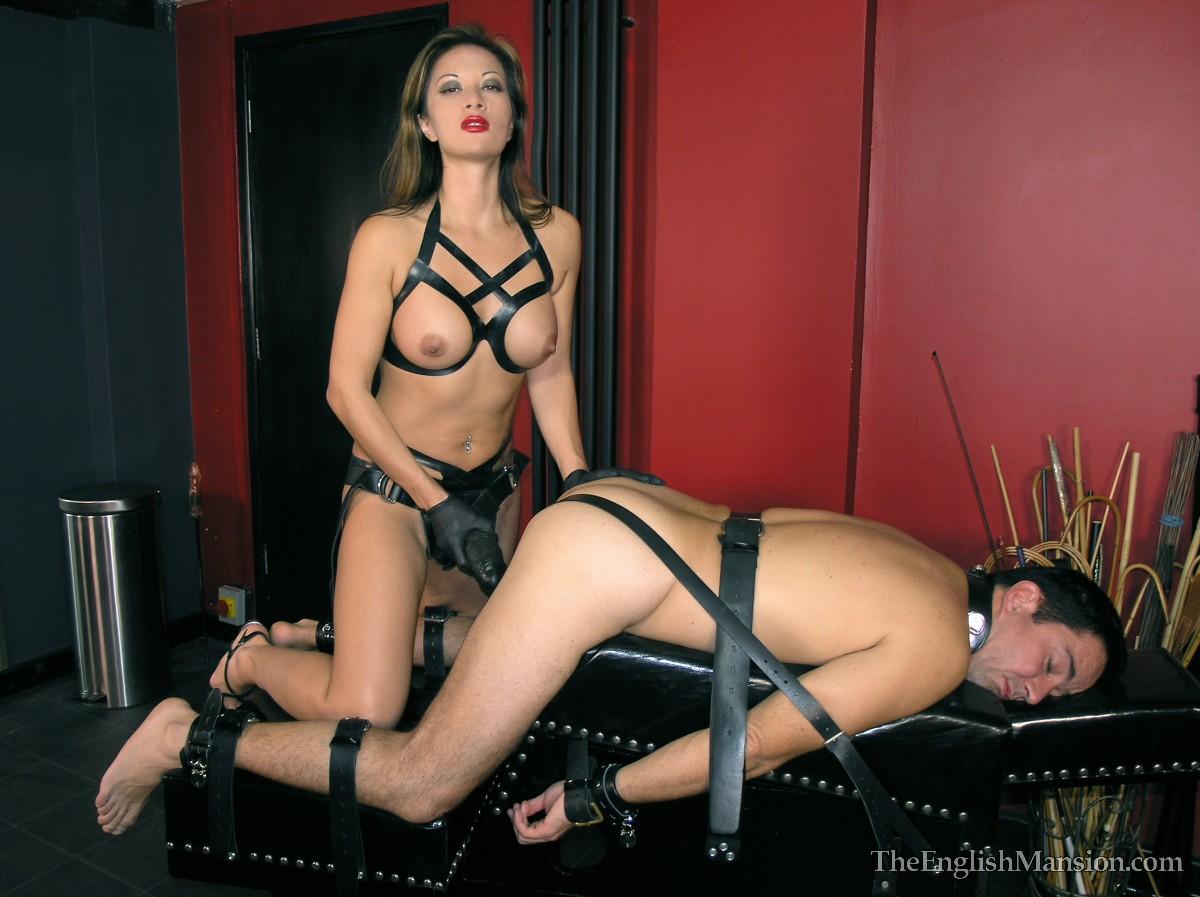 Sexy harness fucking in europa 4